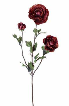 "Silk Ranunculus Spray in Rust 3"" Blooms x 27"" Tall"