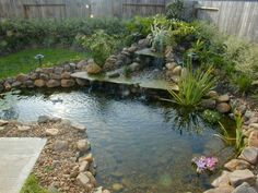 Houston Ponds and Watergarden, Houston Waterfalls, Landscaping, Paver Patios, Pond, waterfalls, lawn sprinkler and drainage