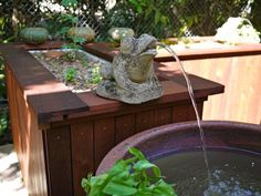 Cafeponics: aquaponics system for a Darwin (Australia) cafe. Nice looking design and practical!