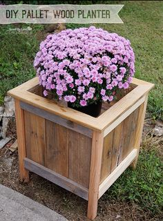 I picked up some mums recently and decided they needed a planter. Using Ana White's Cedar Planter For Less than $20 Free Plan, I made just a few adjustments and built this planter using pallet wood...