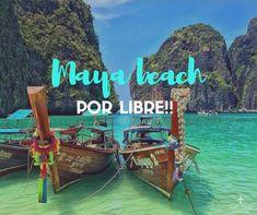 Cómo llegar a Maya beach por libre desde Koh Phi Phi o desde Ao Nang/ Krabi. Todos los tips para tu próximo viaje por Tailandia.