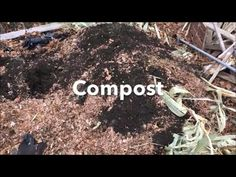Easy Composting at Home - shares with you how to start your very own compost pile or compost bin. Get more organic gardening info and tips at http:/.