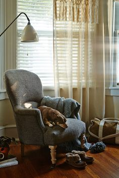 Relax my friend on comfy chair! #anthrofave