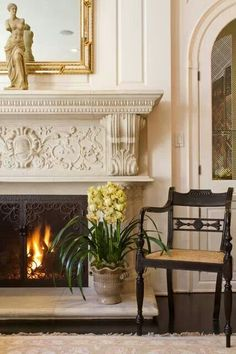 What a beautiful Fireplace Door!