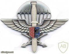 CZECH REPUBLIC 102nd Airborne Reconnaissance Battalion pocket badge