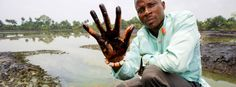Fed Up Nigerian King Takes Shell To Court For Decades Of Oil Pollution