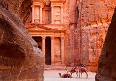 Door onwetendheid ging op een dag zijn paard dood. Nu redt hij werkdieren in Petra, Jordanië.  #shareyourjordan De paardenfluisteraar van Petra - Nomad & Villager http://www.nomadandvillager.com/last-minute-2/paardenfluisteraar-petra/