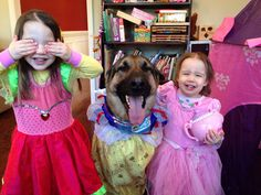 This dog who's totally stoked for the princess tea party. | 21 Photos That Will Turn Your Heart To Goo