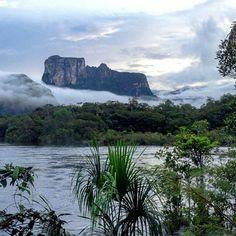 @Regrann from @cdiazmerry -  Amanecer en la comunidad de La Ceguera y encontrarse  frente al Cerro Autana ó Árbol de la Vida (Kuaway).. .. no tiene precio!!! / Awakening in La Ceguera and have a close encounter with the Autana Mount in the venezuelan amazon .. is priceless!! #LaCuadraU #GaleriaLCU #conocevenezuela #icu_venezuela #loves_venezuela #instalovenezuela #instavenezuela #gf_venezuela #venezuelaforum #venezuelafoto_ #venezuelaestrella #zoivenezuela #venezuelan_places…