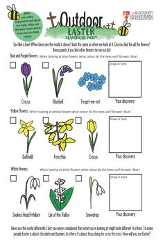 See like a bee in this fun scavenger hunt for children. Explore the different flowers growing around you, reflect on how we all see the world differently, and discuss faith together at home. Easter Scavenger Hunt, About Easter, Easter Activities, Activity Sheets, Home Schooling, Previous Year, Homeschool, Boards, Education