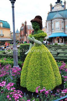 Image result for disney belle hedge