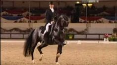 The Cutest Dressage Grand Prix Freestyle EVER [[Hans Peter Minderhoud and Equis Nadine]] Most Beautiful Animals, Beautiful Horses, Horse Dance, Dutch Warmblood, Dressage Horses, Friesian Horse, Horse Story, Horse Videos, All The Pretty Horses