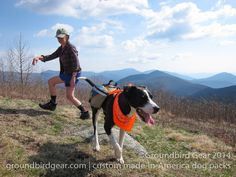 Cooper sporting a Groundbird Gear dog pack with my mom on The Appalachian Trail in VA. View of the religious range. The Cardinal and The Priest mountains