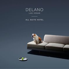 Delano Las Vegas is an understated, all-suite retreat just steps away from Mandalay Bay Resort and Casino. Book direct for the lowest rates guaranteed. Delano Las Vegas, Las Vegas Hotel Deals, Mandalay Bay Resort, Vegas Strip, Books, Libros, Book, Book Illustrations, Libri