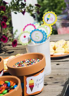 Ice Cream Social - Toppings in flower pots (terracota is cute but colored pots would be nice too, could help pull colors together)