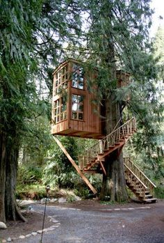 Crazy beautiful treehouse #Treehouse #Beautiful