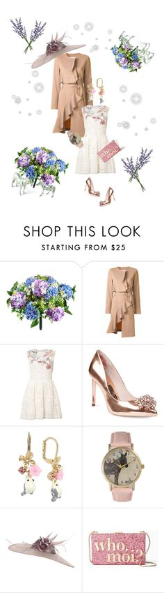 """Kentucky Derby :: Birdie Chic"" by hovlookbook ❤ liked on Polyvore featuring Improvements, Goen.J, RED Valentino, Ted Baker, Betsey Johnson, Olivia Pratt, JANE TAYLOR MILLINERY, Kate Spade and Vagabond House"