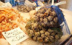Pescaria del Rialto à Venise