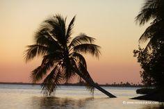 Kuba Fotos  www.reisedoktor.com