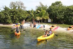 Kayak and Paddleboard Rental in Coconut Grove - Miami | Viator