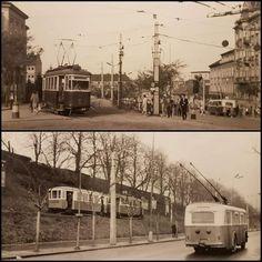 Bratislava, Old Street, Old Photos, Squares, Nostalgia, Times, Retro, Pictures, Swans