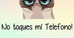 wallpaper - Malo Gatito | Cosas para ponerme | Pinterest | Wallpapers, iPhone wallpapers and Backgrounds
