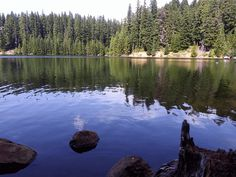 This was made while I was waiting on fish to bite my hook. Z Arts, Oregon, Waiting, Gifs, Animation, Natural, Photography, Travel, Image