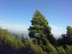 Serra de Petropolis.