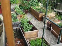 square foot garden & benches