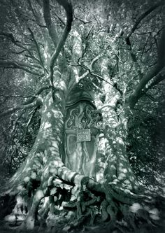 We are Open - Artwork : Enchanted Forest http://www.celtic-photography.co.uk/we-are-open#photo