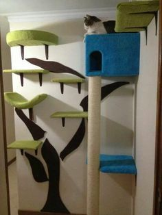 Gimnasio para gatos tipo casa en el arbol CAT area on wall, consists of series of shelves .