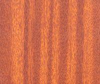 El mundo de la madera