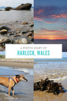 Harlech Beach | Harlech Pictures | Harlech Pinterest | Wales Beach | North Wales | Things to do in Wales | Snowdonia