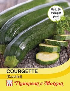 Courgette Zucchini - Blue Diamond Garden Centres
