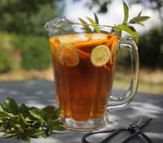How To Grow Tea In Your Own Backyard - http://www.offthegridnews.com/2014/09/06/how-to-grow-tea-in-your-own-backyard/
