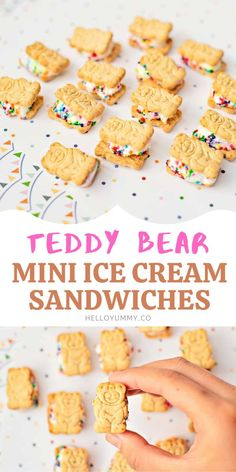 Teddy Bear Graham Ice Cream Sandwiches Colorful Desserts, Kid Desserts, Delicious Desserts, Yummy Recipes, Graham Cookies, Sandwich Ingredients, Ice Cream Cookies, Ice Cream Flavors, Mini Chocolate Chips