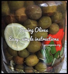 Curing your own Olives – GreeNZ Peace
