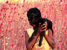 Picture of a boy carrying a calf in Purulia, West Bengal, India