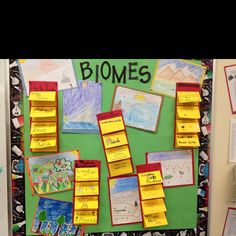 Week 1 -Biome Project  (could use for flip books on each biome?)