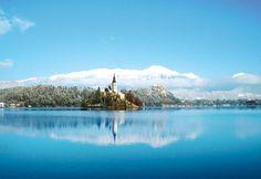 스위스 알프스 - Google 검색