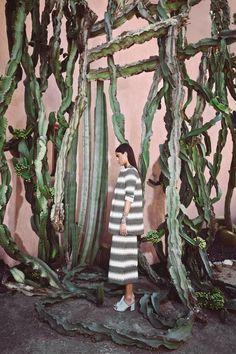 vauxvintage:  A Cactus Dream | MARA HOFFMAN SPRING 2015