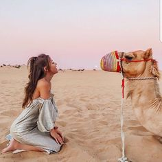 Tours to Egypt with All Tours Egypt & enjoy joyful Egypt Travel packages, Egypt Tour package and we offer tailor Holidays to Egypt and best Egypt Holidays as well as we organize Travel package to Egypt and we can make Egypt travel deals Foto Dubai, Photo Desert, Travel Pictures, Travel Photos, Reisen In Europa, Dubai Travel, Dubai Trip, Egypt Travel, Travel Aesthetic