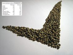 """""""V for Hemp Seed"""" - Typical #Nutritional Content of #Hemp #Seed for #Hemperium"""