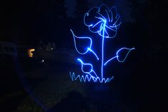 """Light Painted Flower"""