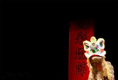 lion dance white Chinese Lion Dance, Chinese Culture, Martial Arts, Combat Sport, Martial Art