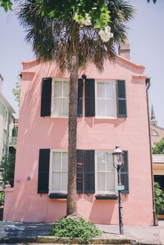 More pink in Charleston, South Carolina