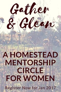 Registration is now open for the Gather & Glean Homestead Mentorship Circle beginning on January 16, 2017 – a perfect time to get clarity around your values and vision, and to take action on your goals and dreams! Learn more at Homestead-Honey.com