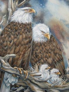 Safety from the Storm by Jody Bergsma