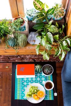 Use this easy IKEA hack to decorate your home with a plant shelfie.