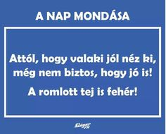 A nap mondása. Funny Quotes, Life Quotes, Lol So True, Einstein, Quotations, Funny Pictures, Mindfulness, Wisdom, Positivity